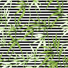 Vector seamless pattern, background with bamboo plants