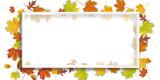 Bildrahmen mit Herbstlaub - 223502198