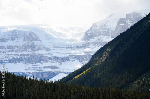 秋のカナディアンロッキーの山並みと氷原 ーアイスフィールド・パークウェイにて(カナダ・アルバータ州)