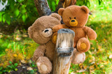 Two Teddy bear toys on autumn natural background  - 223514177