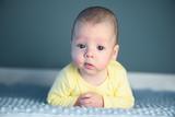 Newborn baby boy portrait on blue carpet closeup. Motherhood and new life concept - 223531188