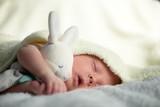 Newborn baby boy portrait on white carpet closeup. Motherhood and new life concept - 223531334