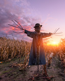 Scary scarecrow in a hat on a cornfield in orange sunset background. Halloween holiday concept - 223533322