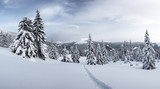 Fantastic winter landscape with snowy trees. Carpathian mountains, Ukraine, Europe. Christmas holiday concept - 223534393