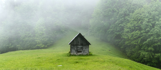 Alone cabin in the woods. High resolution panorama. Landscape photography