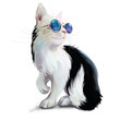 Black and white cat with glasses