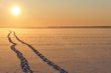 Footprints in snow leading to horizon. Winter frozen lake. Landscape is colored orange by the setting sun. - 223581760