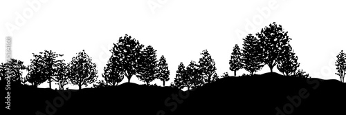 Forest trees silhouettes background - 223584168