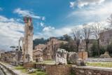 Views of the Roman Forum - 223592530