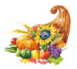 Hand drawn watercolor cornucopia with fall season harvest, pumpkin, sunflower, apple and grape. Food illustration isolated on white background.