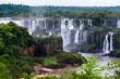 Iguazu Falls - 223676100