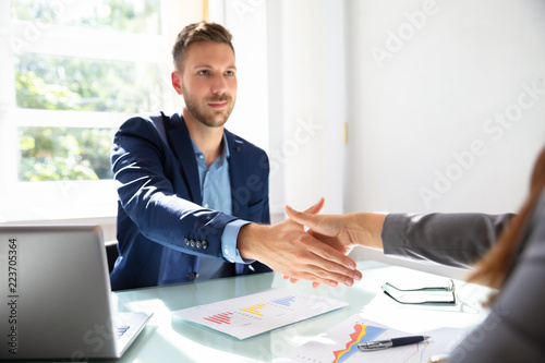 Businessman Shaking Hands With His Partner - 223705364