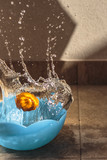 Orang falling inside water bowl