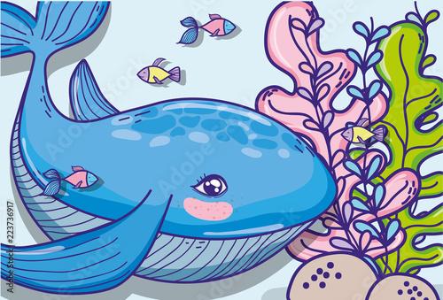 Whale undersea animal cartoon