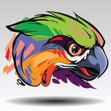 The parrot Design white background.