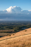 Stunning Summer sunset landscape image of South Downs National Park in English countryside - 223791935