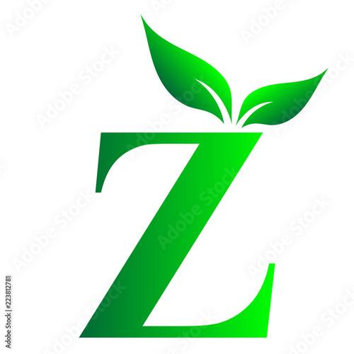 Alphabet Z Letter Z, English Alphabet