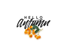 Hello Autumn Black Text Handwritten Calligraphy  Illustration Sticker
