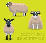 Sheep Scottish Blackface Cartoon Vector Illustration