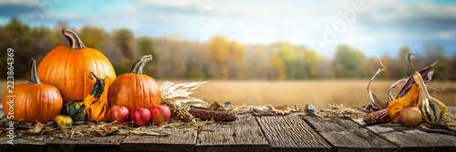 Thanksgiving With Pumpkins  Apples And Corncobs On Wooden Table With Field Trees And Sky In Background - 223864369