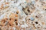 современный фон камень пемза крупным планом - 223885374