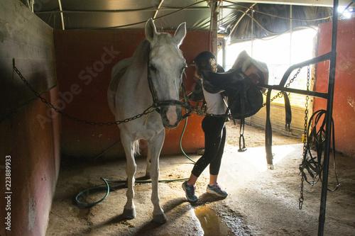 mała dziewczynka siodła konia