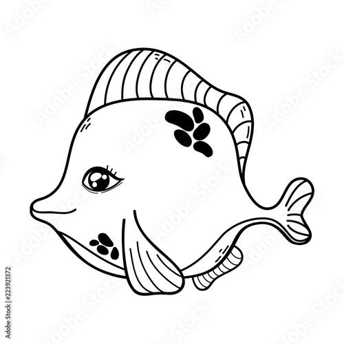 zarys ładny ryb tropikalnych zwierząt morskich
