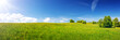 Green field with yellow dandelions and blue sky. Panoramic view to grass and flowers on the hill on sunny spring day