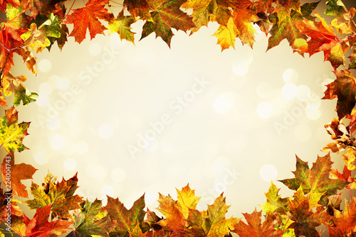 Autumn backdrop of colorful autumn leaves