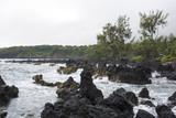 Lava Coastline with Crashing Waves and Trees - 224026947