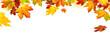 Leinwanddruck Bild - Herbst Rahmen mit bunten Ahornblättern auf weiß, Panorama Format