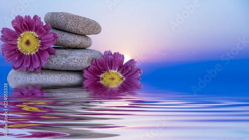 piedras y flores en el agua