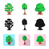Vector design of tree and nature sign. Collection of tree and crown stock symbol for web. - 224070914