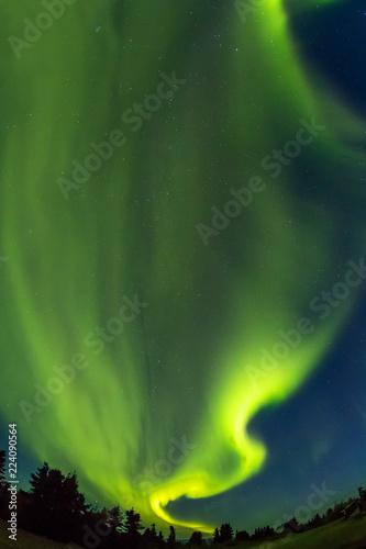 秋のアラスカのオーロラ Aurora Alaska autumn