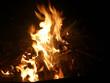 Knut Feuer - 224094772