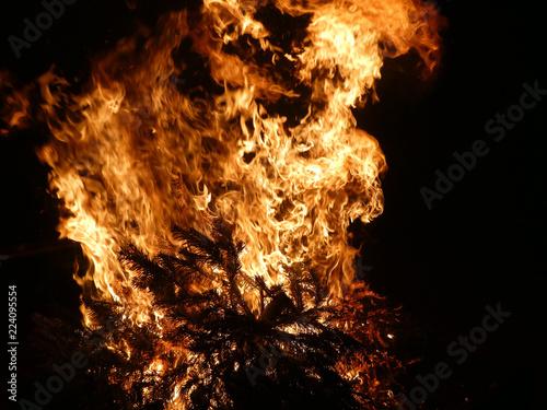 Knut Feuer - 224095554