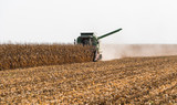 Harvesting of corn field with combine - 224106353