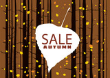Sale autumn on an autumn leaf, fall, background landscape forest, tree trunks, template for banner, poster, vector, illustration, isolated
