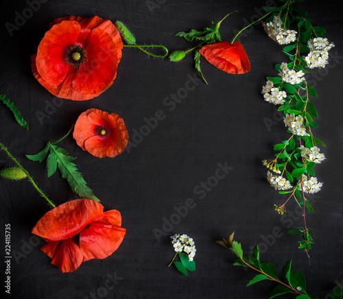bukiet-czerwoni-maczki-i-bialy-spiraea-na-czarnym-tle-dzikie-kwiaty