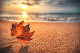Autumn leaf on the sand. Beautiful cloudscape over the sea, sunrise shot