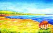 Leinwanddruck Bild - Cyprus donkey illustration