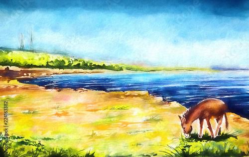 Leinwanddruck Bild Cyprus donkey illustration