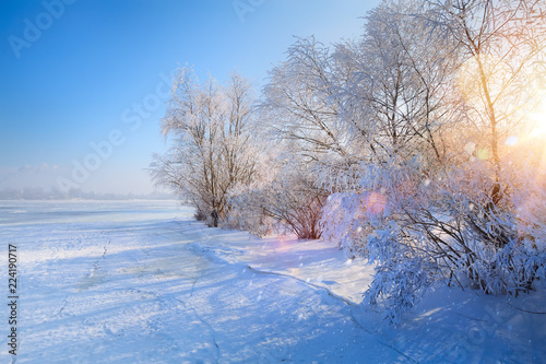 winter Landscape with Frozen lake and snowy trees - 224190717