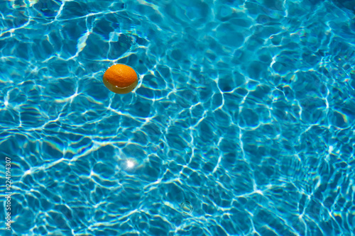 bright orange on blurry water background - 224194307