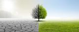 Gesunde Umwelt - 224197783