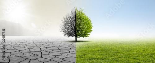 canvas print picture Gesunde Umwelt