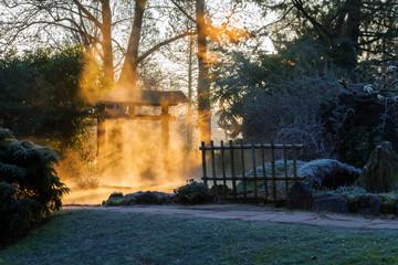 Japanese garden at sunrise. © Bernhard