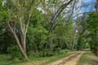 Delaware and Raritan Canal Path