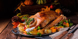 delicious crispy honey goose from the oven - 224296941
