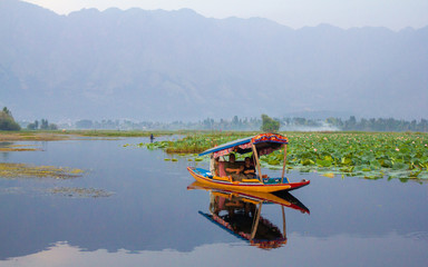 shikara boat in srinagar India © Younes